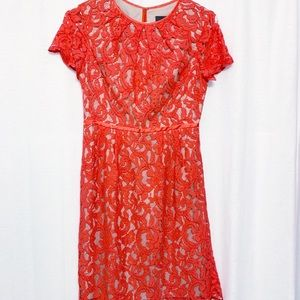 Adrianna Papell lace dress. Size 2P (petite)